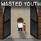 Flash ���� Wasted Youth Part 1